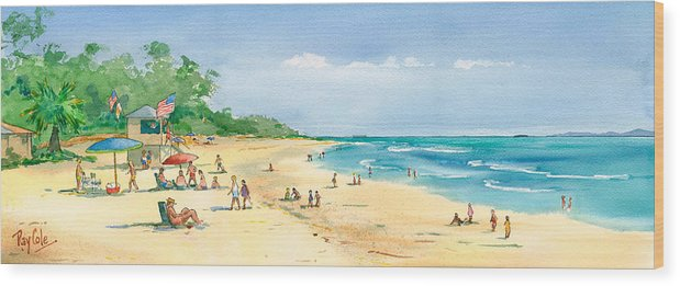 Beach Wood Print featuring the painting Coastal View by Ray Cole