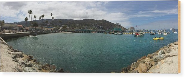 Panorama Wood Print featuring the photograph Catalina Bay by Joshua Solis