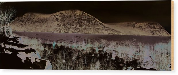 Wood Print featuring the photograph Little Stoney Point Park 3 by Stephen Harris