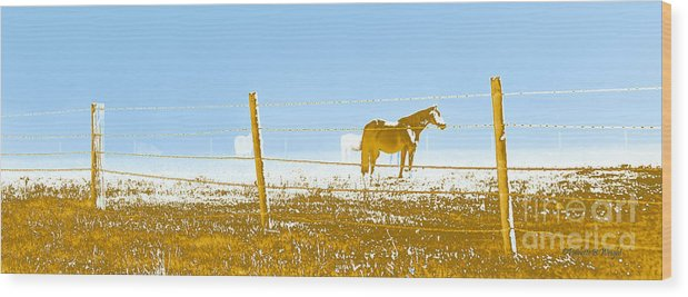 Horse Wood Print featuring the photograph Horse Pasture Revblue by Paulette B Wright
