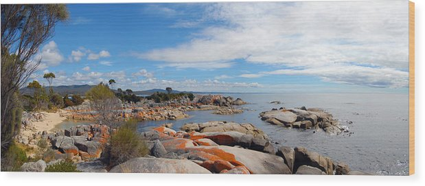 Water Wood Print featuring the painting Bay Of Fires Panorama by Glen Johnson