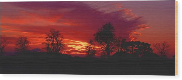 Sunset Wood Print featuring the photograph 022107-37 by Mike Davis