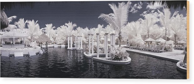 3scape Photos Wood Print featuring the photograph Infrared Pool by Adam Romanowicz