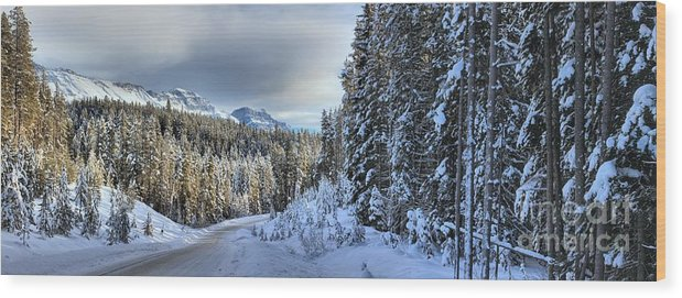 Bow Valley Parkway Wood Print featuring the photograph Storm Clouds Over Bow Valley Parkway by Adam Jewell