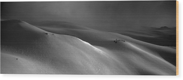 Snow Wood Print featuring the photograph Snowscape by Alasdair Turner