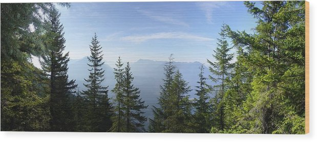 Landscape Wood Print featuring the photograph The View by Mark Camp