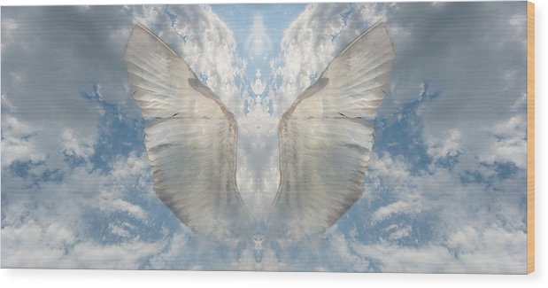 Sky Wood Print featuring the photograph Wings 1 by Bob Bennett