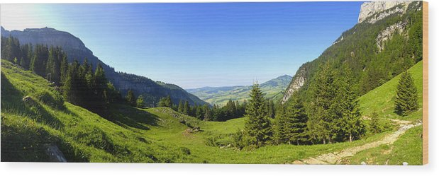 Appenzell Wood Print featuring the photograph Panorama Of The Appenzeller Hills Near Mount Saentis Switzerland by PIXELS XPOSED Ralph A Ledergerber Photography
