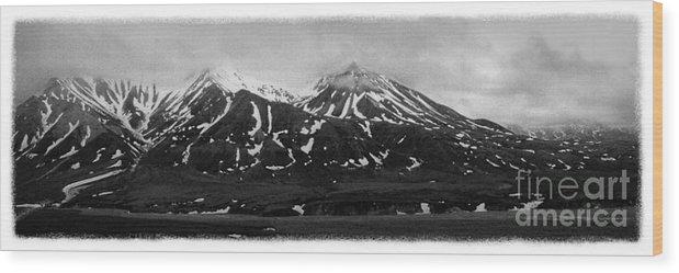 Alaska Wood Print featuring the photograph The Real Alaska - Denali Panorama by Pete Hellmann