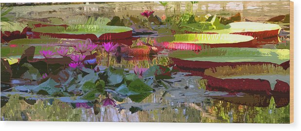 Water Lilies Wood Print featuring the photograph Passion for Beauty by John Lautermilch