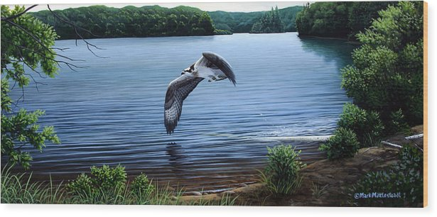 Osprey Wood Print featuring the painting Osprey Over Clear Lake by Mark Mittlesteadt
