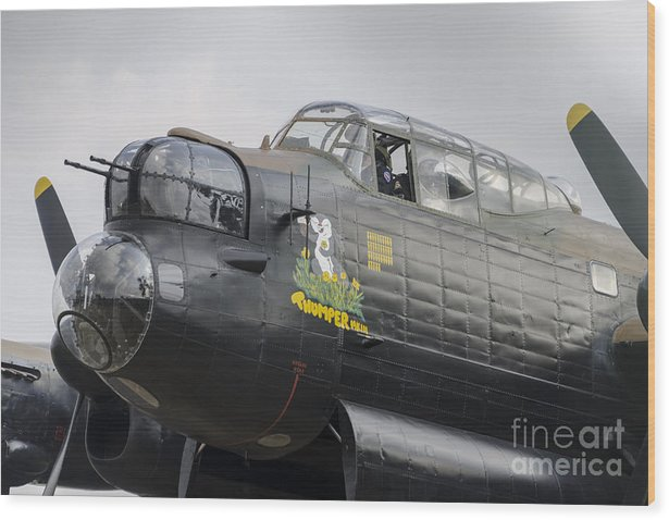 Thumper Wood Print featuring the photograph Thumper And The Lancaster by Steev Stamford