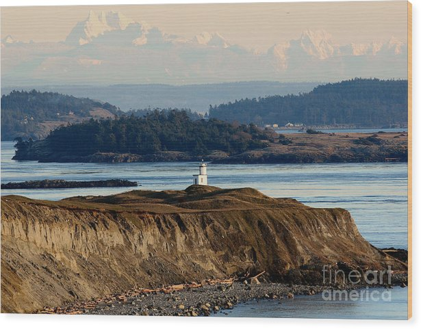 Lighthouse Wood Print featuring the photograph Cattle Point Lighthouse San Juan Island by Sandy Buckley