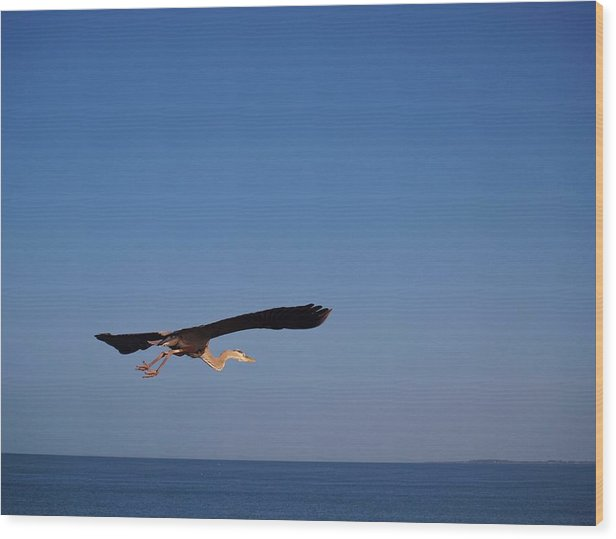 Beach Wood Print featuring the photograph Stretch Away Up High by E Luiza Picciano