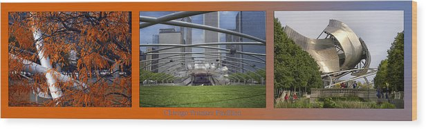 Chicago Wood Print featuring the photograph Chicago Pritzker Music Pavillion Triptych 3 Panel by Thomas Woolworth