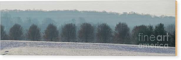 North America Wood Print featuring the photograph Pennsylvania Winter by Maria Costello
