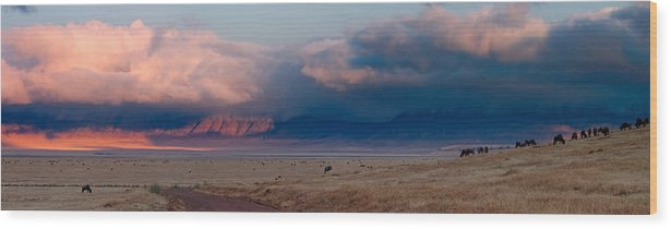 3scape Wood Print featuring the photograph Dawn In Ngorongoro Crater by Adam Romanowicz