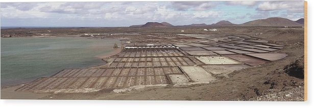 Collection Wood Print featuring the photograph Salt Pans by Tony Craddock/science Photo Library