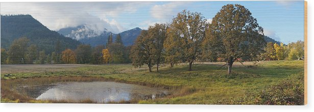 Panorama Wood Print featuring the photograph Autumn In Evans Valley by Mick Anderson