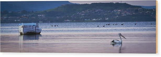 Pelican Wood Print featuring the photograph Tranquility by I Take Thee Photography