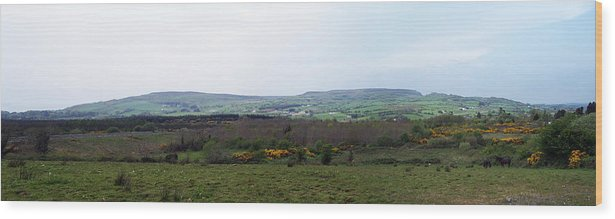 Ireland Wood Print featuring the photograph Horses At Lough Arrow County Sligo Ireland by Teresa Mucha