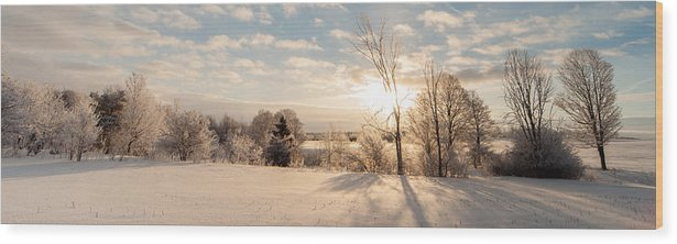 Landscape Wood Print featuring the photograph Winter Sunrise Panorama by Richard Kitchen
