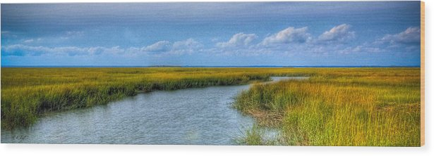 Beaufort Wood Print featuring the photograph Low Country Vista by E R Smith