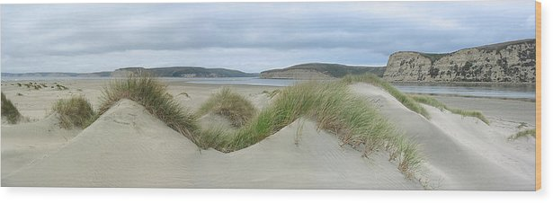 Landscape Wood Print featuring the photograph Limantour Spit On A Grey Day by Bob Bennett