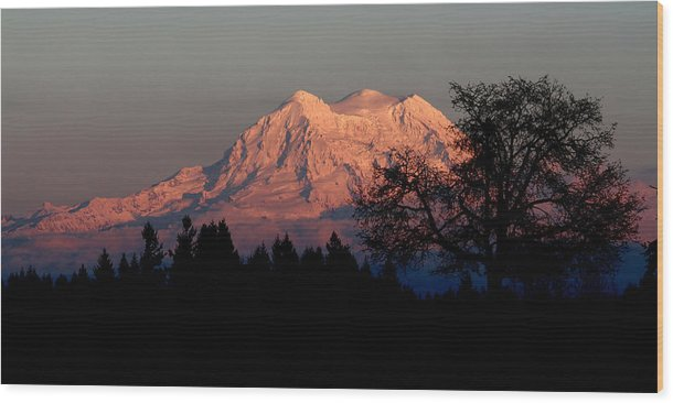 Landscape Wood Print featuring the photograph A Majestic Goodnight by Rory Sagner