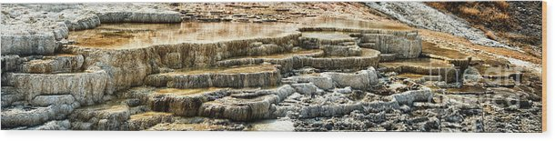 Yellowstone Wood Print featuring the photograph Yellowstone Rock Formation by Stanton Tubb