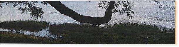 Tree Near The Water Wood Print featuring the photograph Tree Near The Water2 by John Hiatt