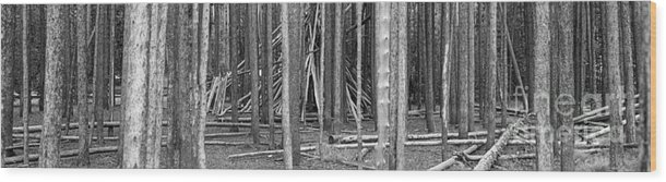 Black And White Wood Print featuring the photograph Hidden Shelter by Witt Lacy