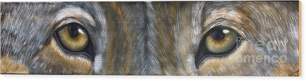 Wolf Wood Print featuring the painting Wolf Eyes by Darlene Green