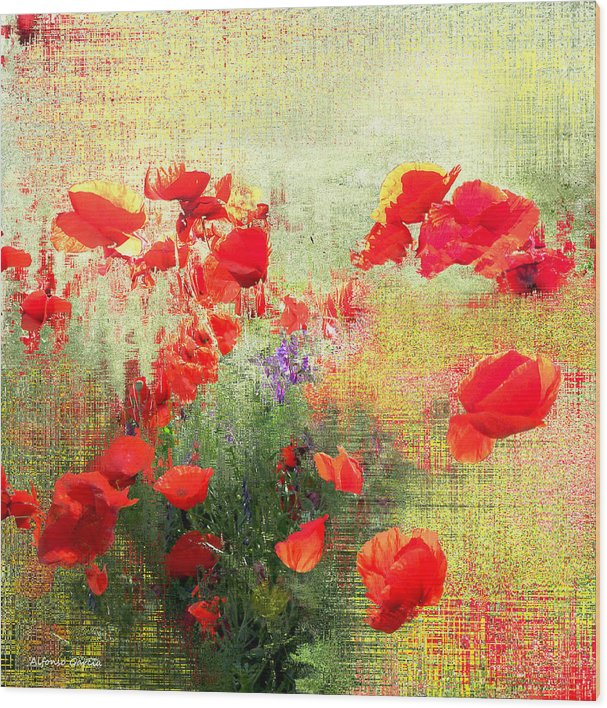 Fine Art Flowers Wood Print featuring the photograph Formas Y Flores by Alfonso Garcia