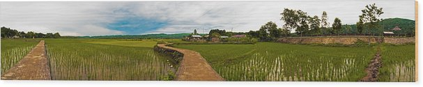 Philippines Wood Print featuring the photograph 6x1 Philippines Number 123 Rice Fields Panorama by Rolf Bertram