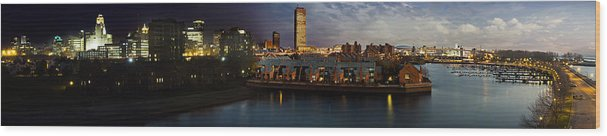 Buffalo Wood Print featuring the photograph Buffalo Dusk To Dark by Peter Chilelli