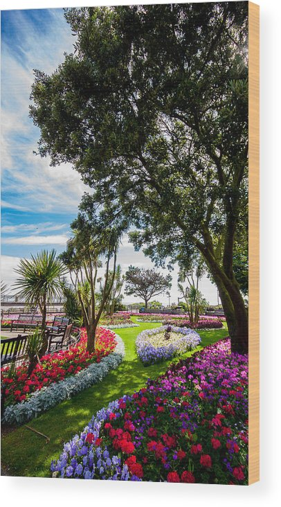 Beach Wood Print featuring the photograph Clacton Pleasure Garden by Dawn OConnor