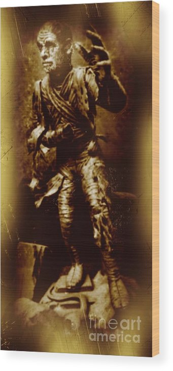 Nightmares Wood Print featuring the photograph The Mummy Document by John Malone