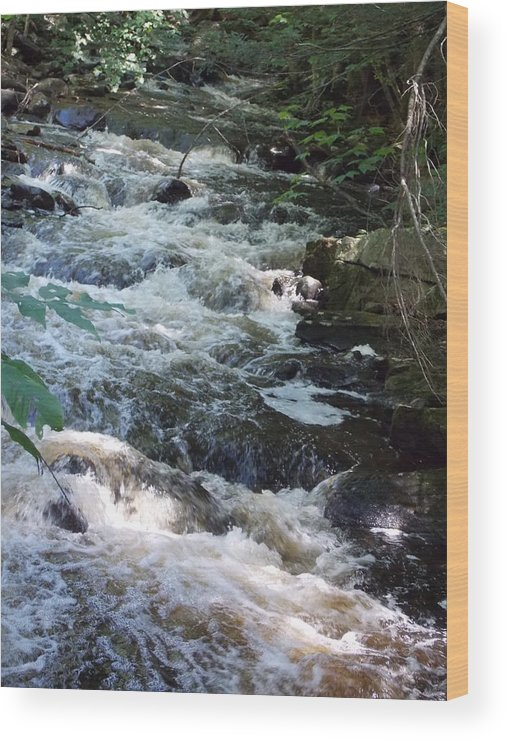 Beaver Brook Wood Print featuring the photograph Beaver Brook by Catherine Gagne