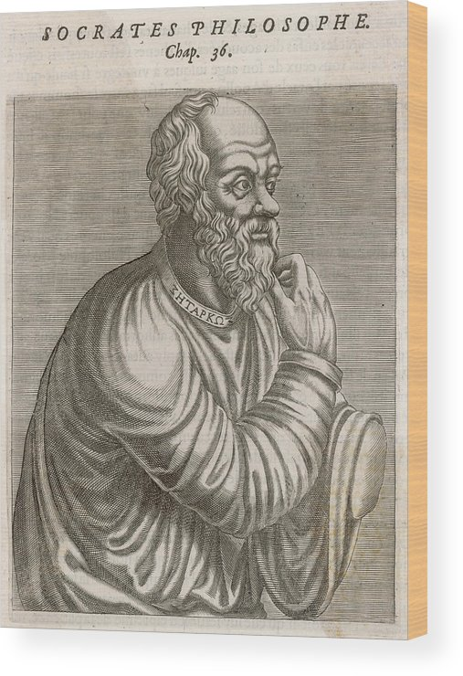 Socrates Wood Print featuring the drawing Socrates (470 - 399 Bc) Greek by Mary Evans Picture Library
