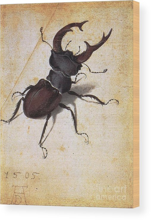 U.s.pd Wood Print featuring the painting Cervus Lucanus by Pg Reproductions