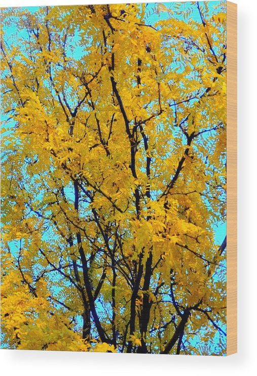 Tree Wood Print featuring the photograph Colors Of Fall - Smatter by Deborah Crew-Johnson