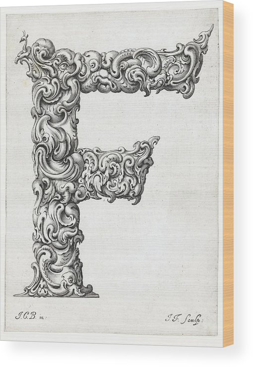 F Wood Print featuring the photograph Decorative Letter Type F 1650 by Georgia Fowler