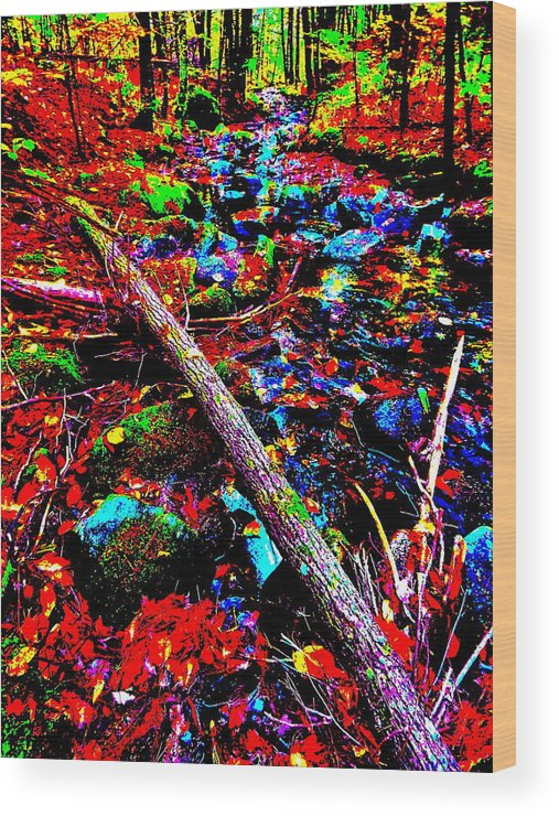 Landscape Wood Print featuring the photograph Fall 2014 Ultra 44 by George Ramos