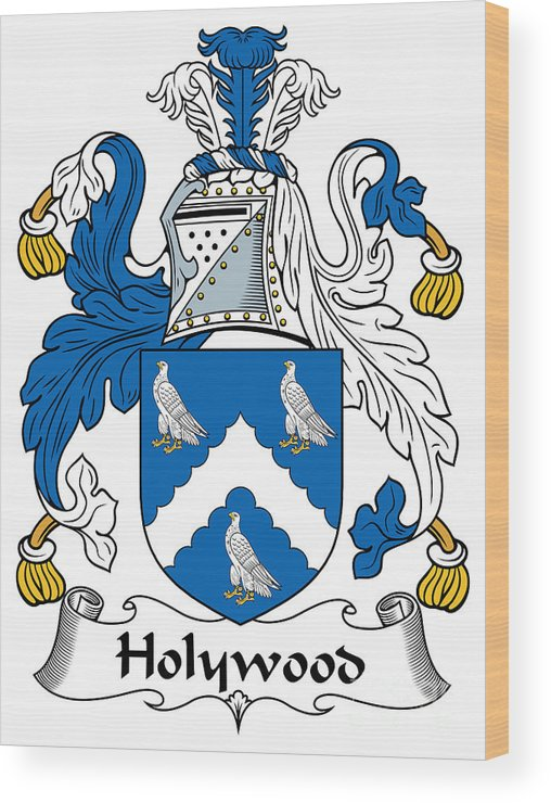 Holywood Wood Print featuring the digital art Holywood Coat Of Arms Irish by Heraldry