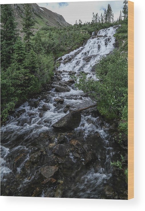 Mountain Wood Print featuring the photograph Mtn Steam by Kevin Buffington