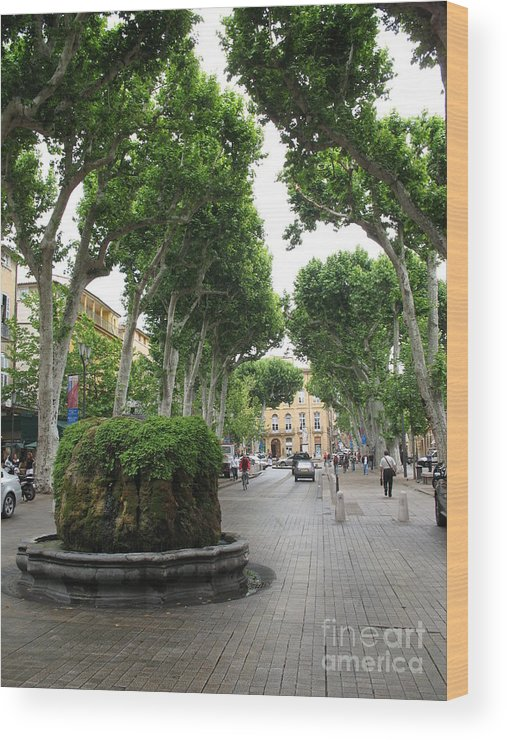 Plane Wood Print featuring the photograph Plane Alley - Aix En Provence by Christiane Schulze Art And Photography