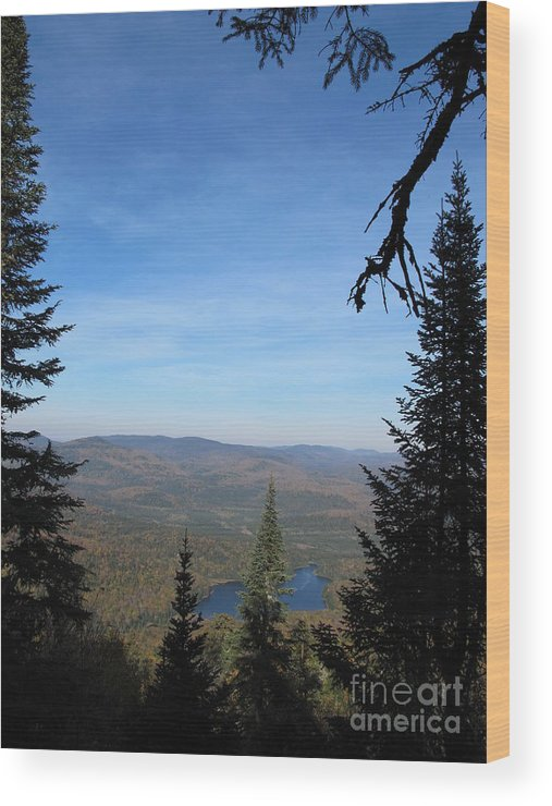 Sky Wood Print featuring the photograph Sky And Ground by Andre Paquin