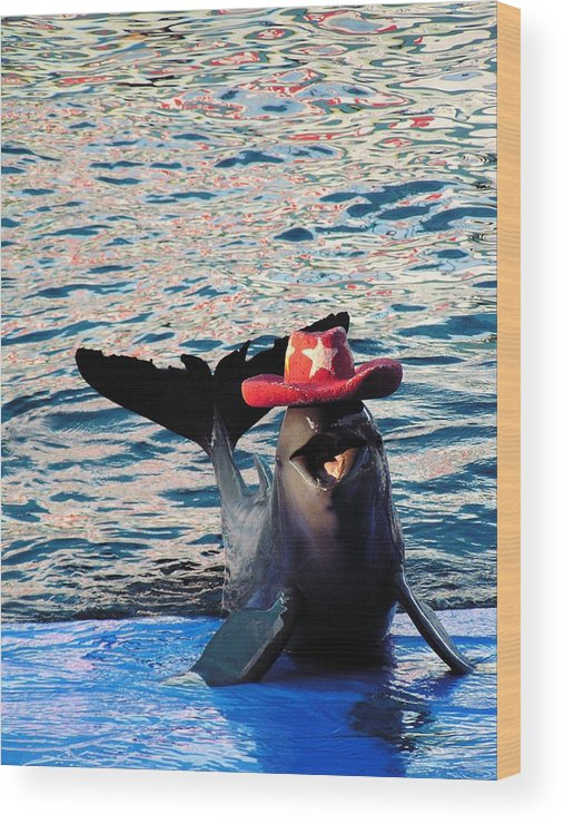 Bimbalopic Wood Print featuring the photograph Smiley Dolphin by Sarode Nimmanwattana