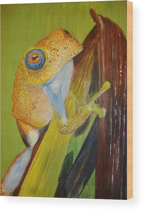 Frog Wood Print featuring the painting Speckled Frog by Siobhan Shene
